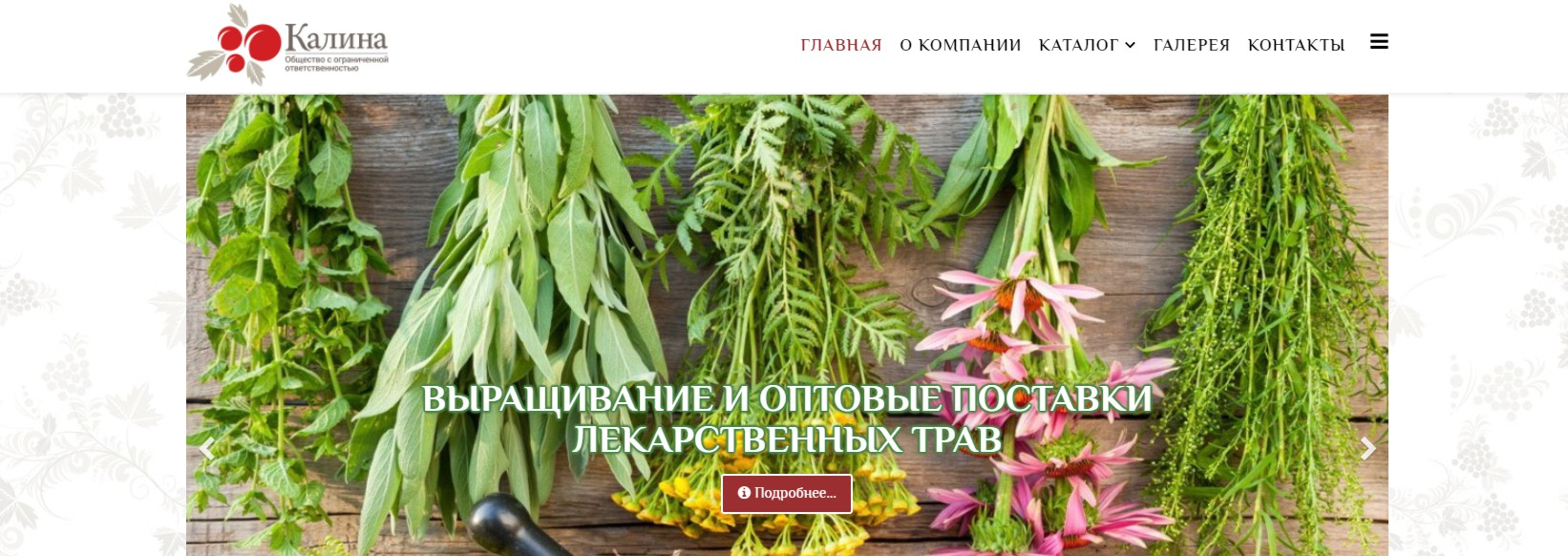 Разработка сайтов в Минске